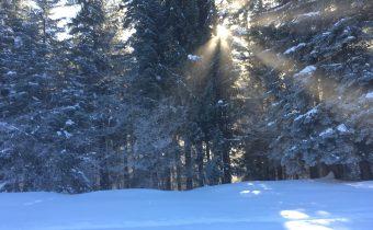Martin Rázus – Novoročná modlitba
