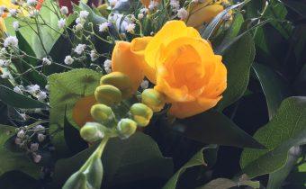 Kvetná nedeľa – predzvesť víťazstva