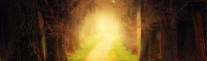 Kráča cirkev širokou cestou?